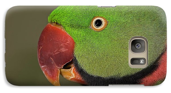 Galaxy Case featuring the photograph Alexandrine Parakeet by JT Lewis
