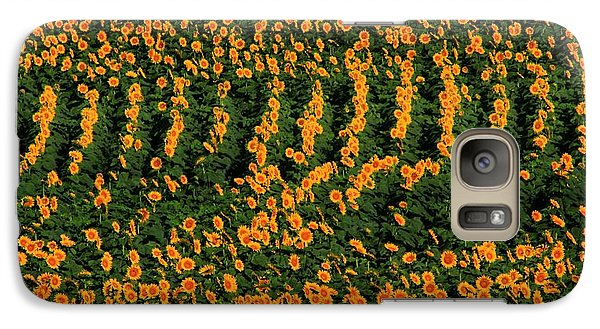 Galaxy Case featuring the photograph All In A Row by Chris Berry
