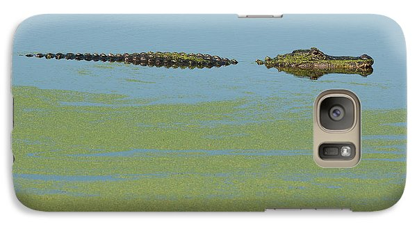 Galaxy Case featuring the photograph Alligator  by Carolyn Dalessandro