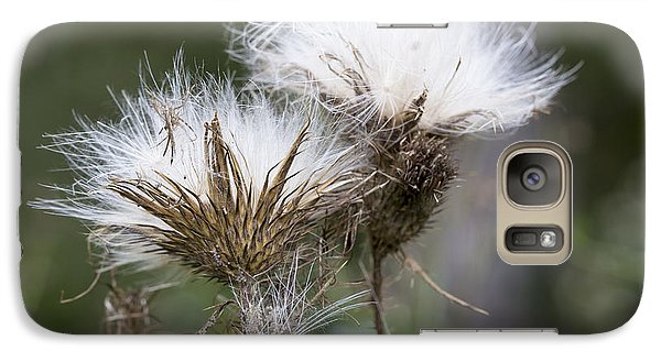 Galaxy Case featuring the photograph Along The Meadow Trail by Andrew Pacheco