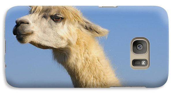 Galaxy Case featuring the photograph Alpaca by Skip Hunt