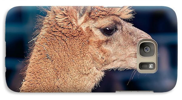 Alpaca Wants To Meet You Galaxy S7 Case by TC Morgan