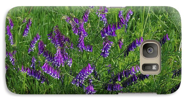 Galaxy Case featuring the photograph Alpine Vetch by Robyn Stacey