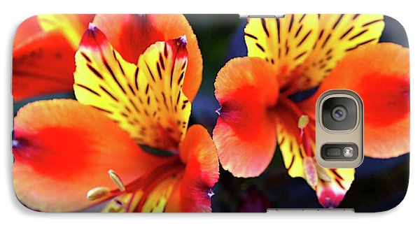 Galaxy Case featuring the photograph Alstroemeria Indian Summer by Baggieoldboy