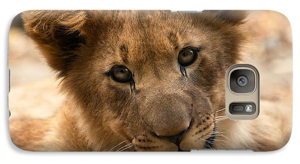 Galaxy Case featuring the photograph Am I Cute? by Christine Sponchia