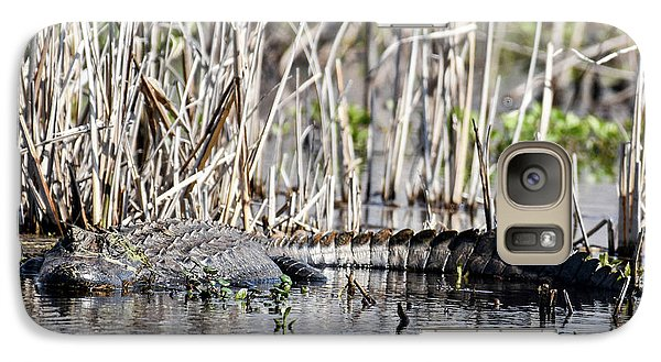 Galaxy Case featuring the photograph American Alligator by Gary Wightman