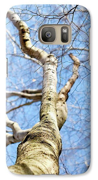 American Beech Tree Galaxy S7 Case by Christina Rollo