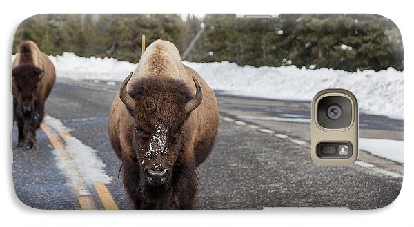 Galaxy Case featuring the photograph American Bison In Yellowstone National Park by Carol M Highsmith