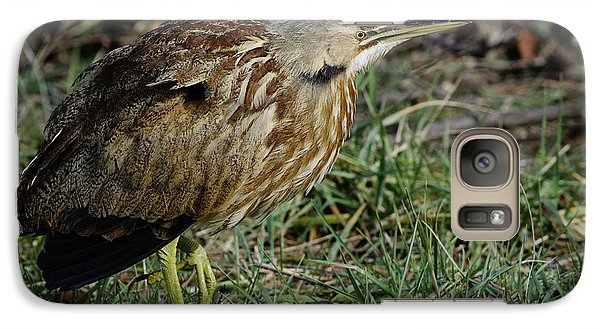 Galaxy Case featuring the photograph American Bittern by Douglas Stucky