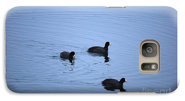 Galaxy Case featuring the photograph American Coots 20120316_39a by Tina Hopkins