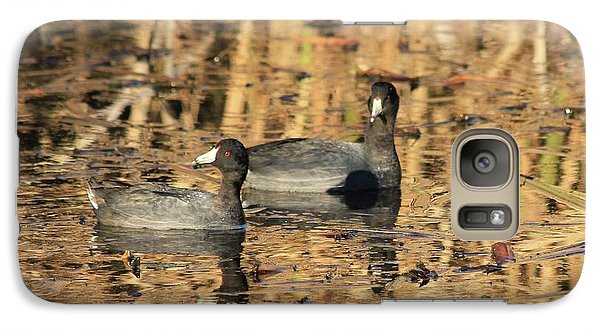 Galaxy Case featuring the photograph American Coots by Jerry Battle
