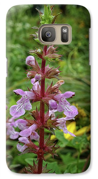 Galaxy Case featuring the photograph American Germander by Scott Kingery