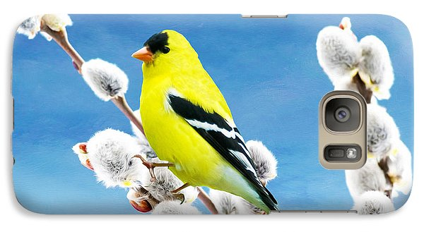 Finch Galaxy S7 Case - American Goldfinch Perched On Pussy Willow by Laura D Young