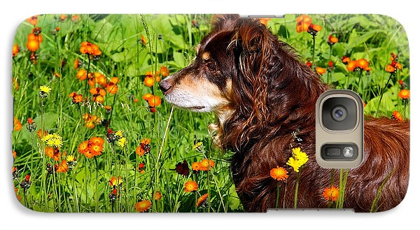 Galaxy Case featuring the photograph An Aussie's Thoughtful Moment by Debbie Oppermann