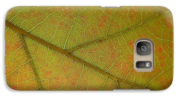 Galaxy Case featuring the photograph An Autumn Leaf by Jean Bernard Roussilhe