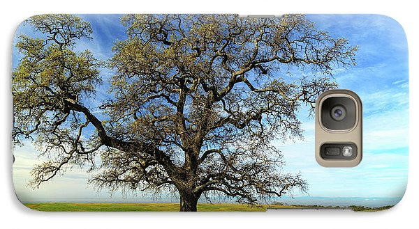 Galaxy Case featuring the photograph An Oak In Spring by James Eddy