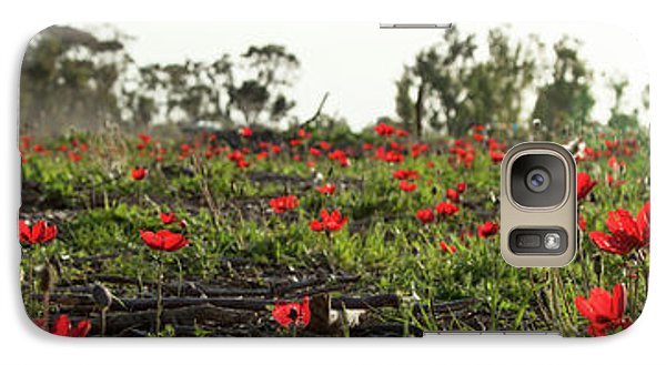 Galaxy Case featuring the photograph Anemones Forest Panorama by Yoel Koskas