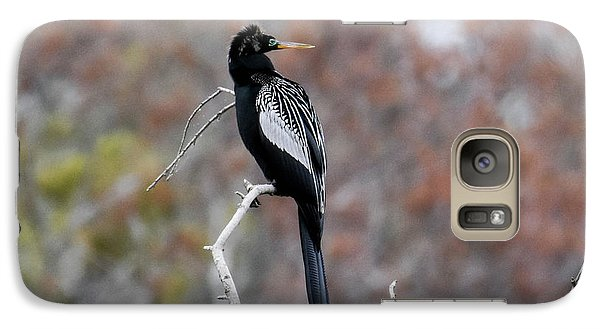 Galaxy Case featuring the photograph Anhinga by Gary Wightman