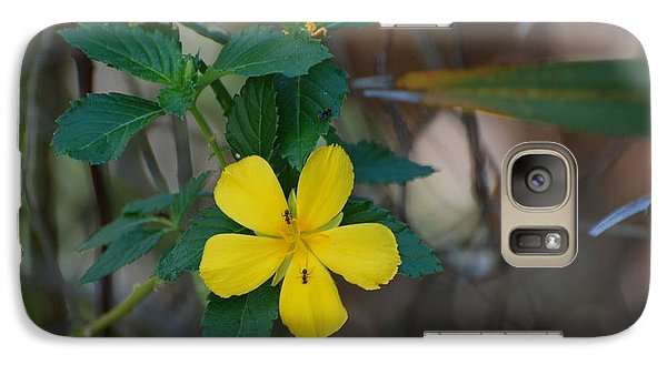 Galaxy Case featuring the photograph Ant Flowers by Rob Hans