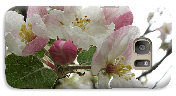 Galaxy Case featuring the photograph Apple Blossoms - Wild Apple by Angie Rea