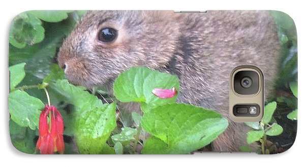 Galaxy Case featuring the photograph April Rabbit And Columbine by Peg Toliver