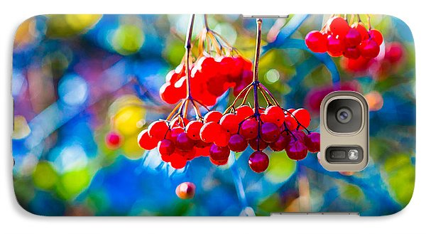 Galaxy Case featuring the photograph Arrowwood Berries Abstract by Alexander Senin