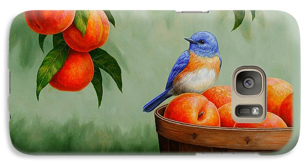 Bluebird And Peaches Greeting Card 3 Galaxy Case by Crista Forest