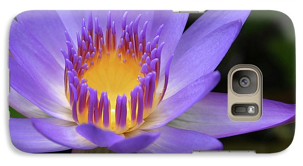 My Soul Dressed In Silence Galaxy S7 Case by Sharon Mau