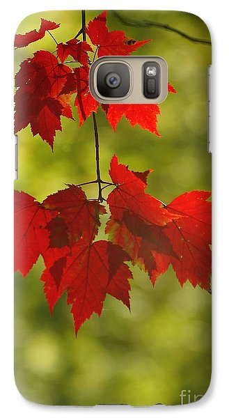 Galaxy Case featuring the photograph As Red As They Can Be by Aimelle