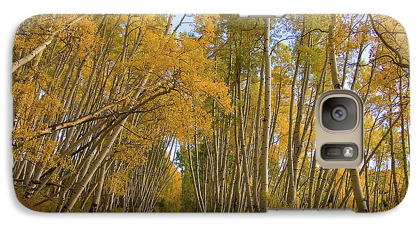 Galaxy Case featuring the photograph Aspen Alley by Steve Stuller