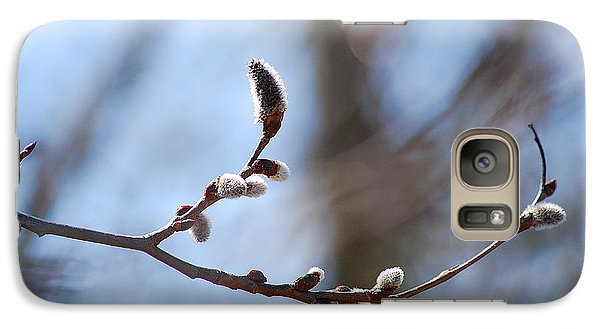 Galaxy Case featuring the photograph Aspen Catkins 20120314_33a by Tina Hopkins