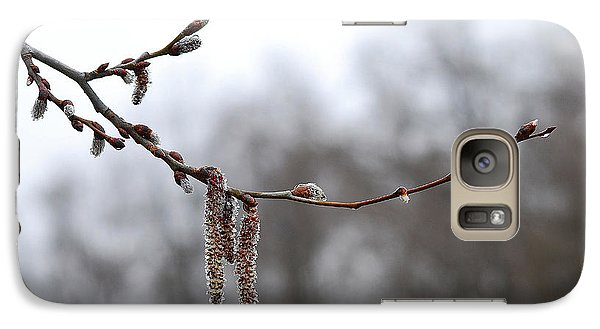 Galaxy Case featuring the photograph Aspen Catkins 20120316_15a by Tina Hopkins