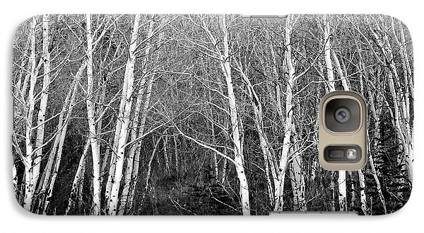 Aspen Forest Black And White Print Galaxy S7 Case