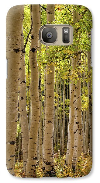 Galaxy Case featuring the photograph Aspen Grove by Dana Sohr