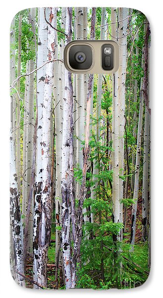 Galaxy Case featuring the photograph Aspen Grove In The White Mountains by Donna Greene