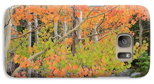 Galaxy Case featuring the photograph Aspen Stoplight by David Chandler