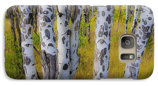 Galaxy Case featuring the photograph Aspens by Gary Lengyel