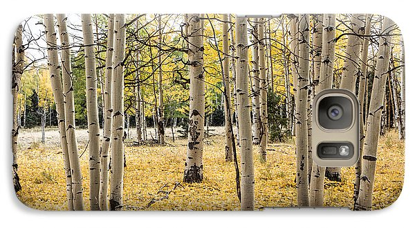 Galaxy Case featuring the photograph Aspens In Conejos County In Colorado, Near The New Mexico Border by Carol M Highsmith