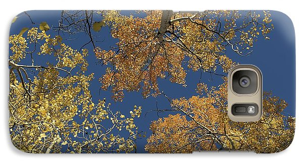 Galaxy Case featuring the photograph Aspens Looking Up by Mary Hone