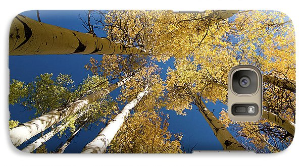 Galaxy Case featuring the photograph Aspens Up by Steve Stuller