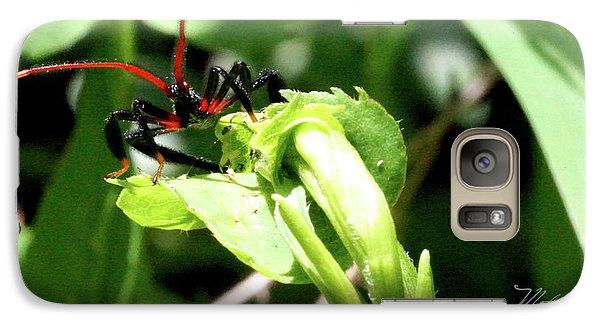Galaxy Case featuring the photograph Assassin Bug by Meta Gatschenberger