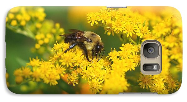 Galaxy Case featuring the photograph August Bee by Susan  Dimitrakopoulos
