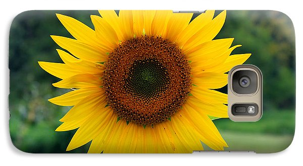 Galaxy Case featuring the photograph August Sunflower by Jeff Severson