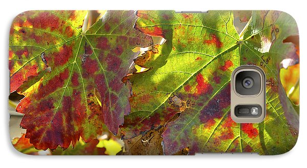 Galaxy Case featuring the photograph Autumn At Lachish Vineyards 2 by Dubi Roman