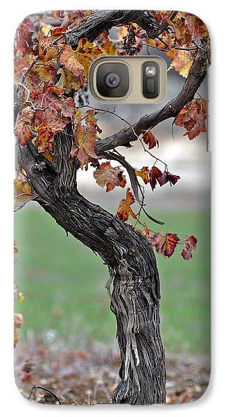 Galaxy Case featuring the photograph Autumn At Lachish Vineyards 3 by Dubi Roman