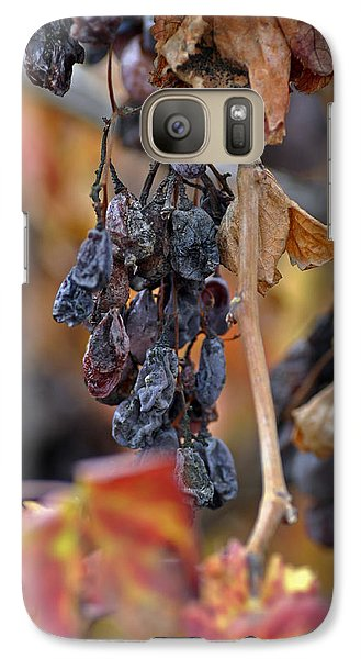 Galaxy Case featuring the photograph Autumn At Lachish Vineyards 4 by Dubi Roman
