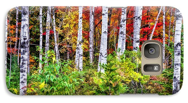 Galaxy Case featuring the painting Autumn Birches by Christopher Arndt