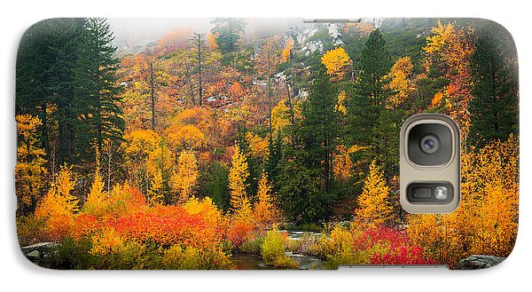 Galaxy Case featuring the photograph Autumn Colors Symphony by Dan Mihai
