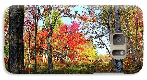 Galaxy Case featuring the photograph Autumn Forest by Debbie Oppermann