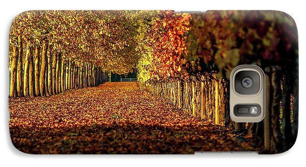 Galaxy Case featuring the pyrography Autumn In Napa Valley by Bill Gallagher